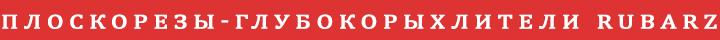 ploskorezi-glubokorihliteli rubarz